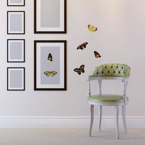 Бабочки Солнечное лето