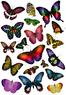 наклейки Сказочные бабочки